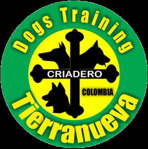 Tierra Nueva Dogs